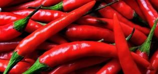 Os 8 Benefícios da Pimenta Para Saúde…